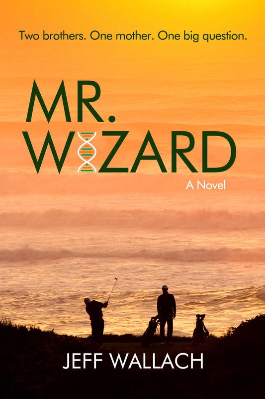 Mr. Wizard: A Novel by Jeff Wallach