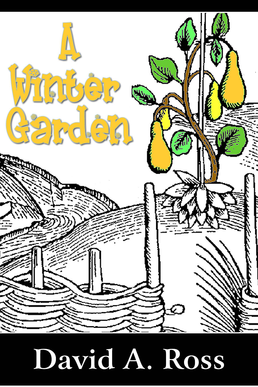 A Winter Garden by David A. Ross